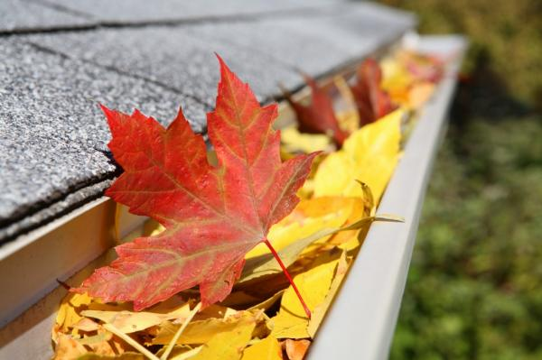 eaves trough full of leaves, clean your gutters